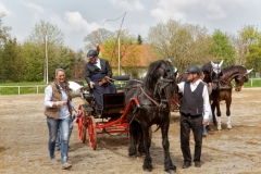 img_2695-fuhrmanstag-kemnitz-2013