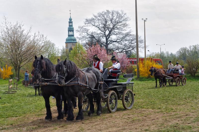 img_2653-fuhrmanstag-kemnitz-2013