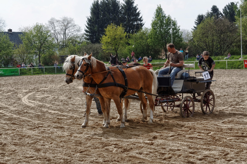 img_3038-fuhrmanstag-kemnitz-2013