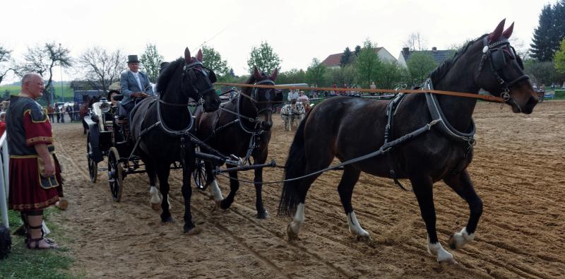 img_3081-fuhrmanstag-kemnitz-2013