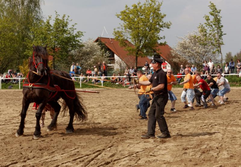 img_3111-fuhrmanstag-kemnitz-2013