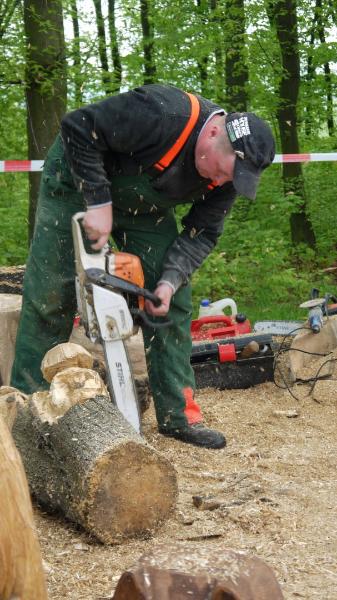 p1250240-3-internationales-kettensaegenschnitzer-treffen-eibau