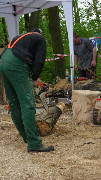 p1250256-3-internationales-kettensaegenschnitzer-treffen-eibau