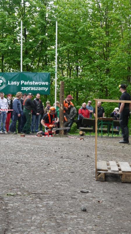 p1250352-3-internationales-kettensaegenschnitzer-treffen-eibau