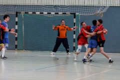 img_2473-handball-highlight-loebau