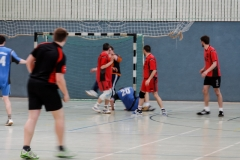 img_2475-handball-highlight-loebau