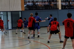 img_2491-handball-highlight-loebau