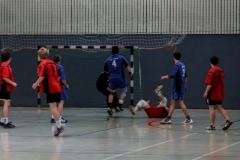 img_2494-handball-highlight-loebau