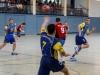 img_2583-handball-highlight-loebau
