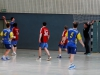 img_2613-handball-highlight-loebau