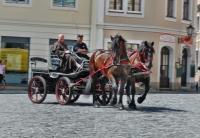 p1270216-loeber-bierwagenziehen-2013_02